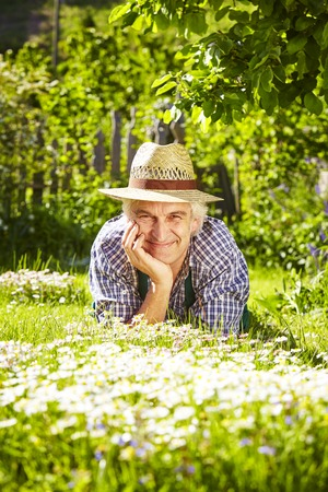 lean on hands: Gardener with straw hat lying in a flower meadow of daisys