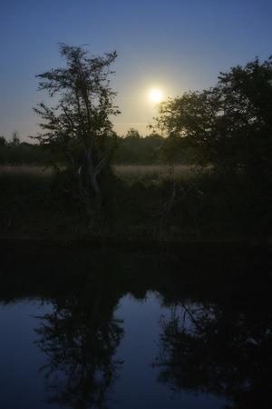 Kanal bei Nacht mit Mondschein Wald und Wiese im Gegenlicht                                Stockfoto