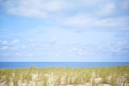Dune with beach grass and sky with clouds in summer
