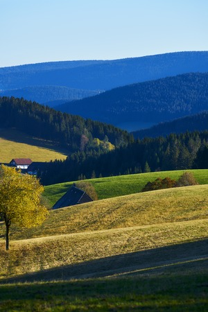 Meadow at the forest with mountain slope and house in the sun in autumn