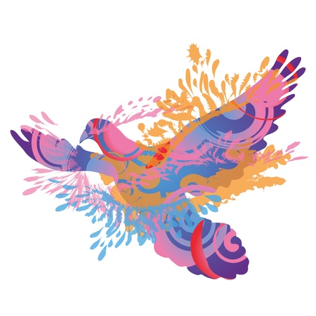 the deaf: Pigeon