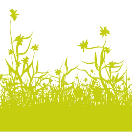 Flowers in the grass Stock Vector - 14584160