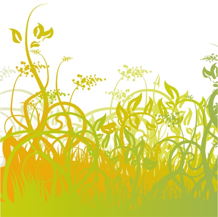Meadow grass and creepers Vector