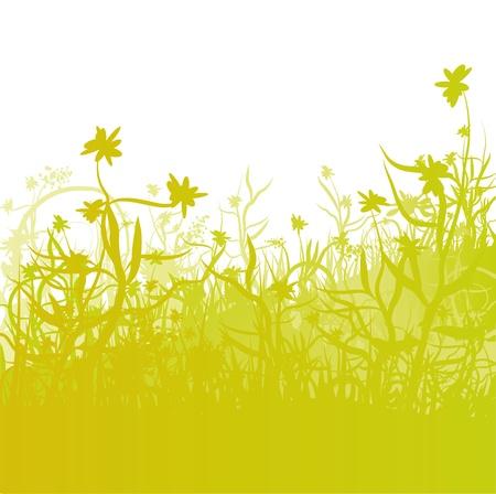 Lawn and Garden Stock Vector - 14603238