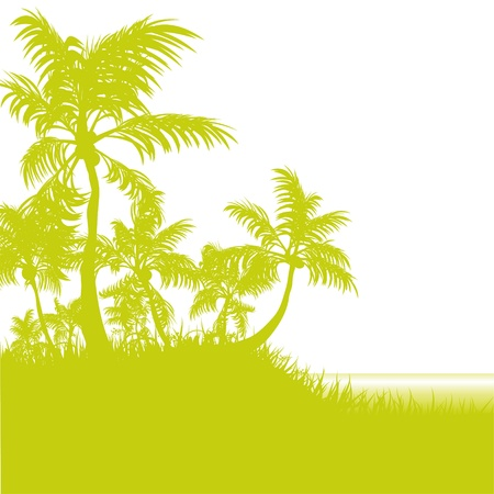 Palms and beach Vector