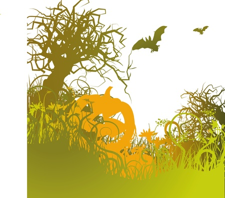 echo: halloween, bat and pumpkin Illustration
