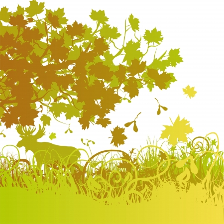 Maple mixed forest Stock Vector - 15646146