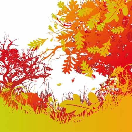 ecology background: oak, mixed forest and boar Illustration