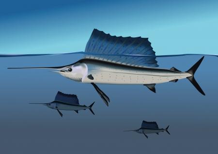Marlins in the ocean Stock Vector - 18752962