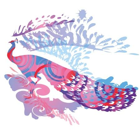 glorious: Glorious Peacock Illustration