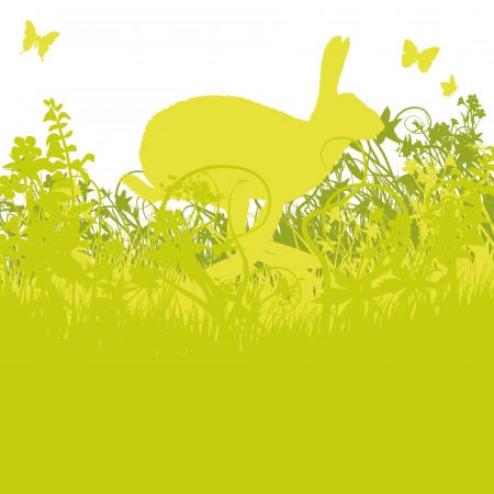 Hare of hops over a meadow Stock Vector - 19902169