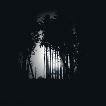 Dark spruce forest at night Vector