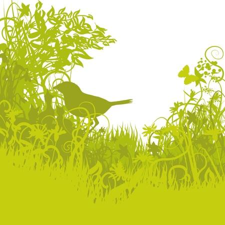 biotope: Bird s nest in the green undergrowth