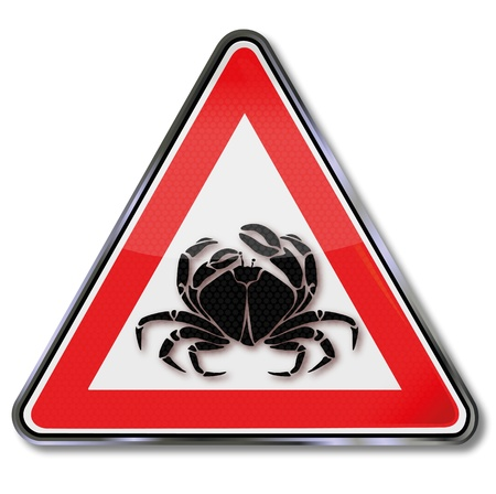 cancer crab: Seafood