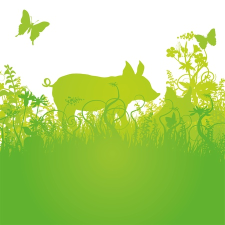 fortunately: Lucky pig on the meadow Illustration