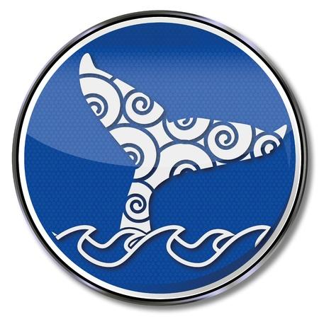 fluke: Sign whale fin