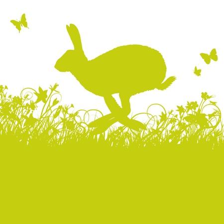 Hare en el pasto Foto de archivo - 21919264