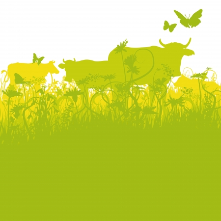conservation grazing: Cows on pasture Illustration