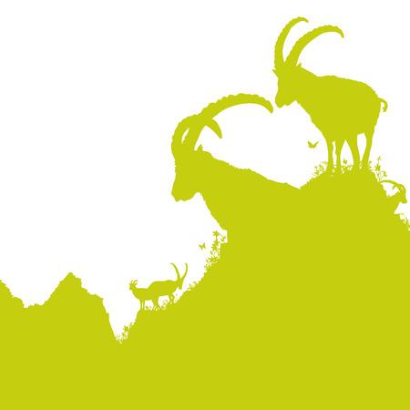 capricornio: Ibex en las monta�as