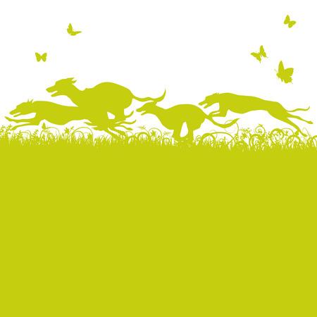 chart: Źdźbła trawy i działa psy i charty