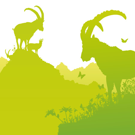 Ibex on the hillside  Illustration