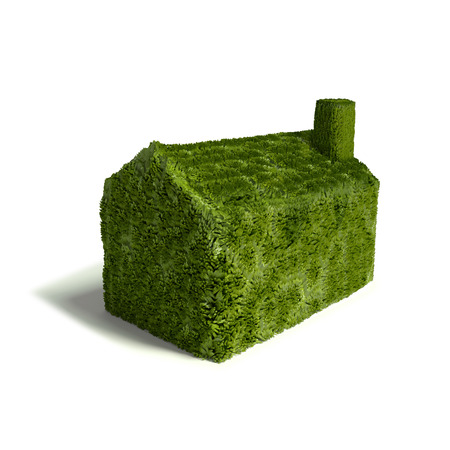 Small green grass house photo