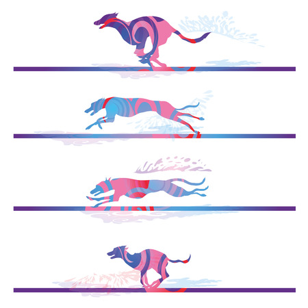Racing and running dogs