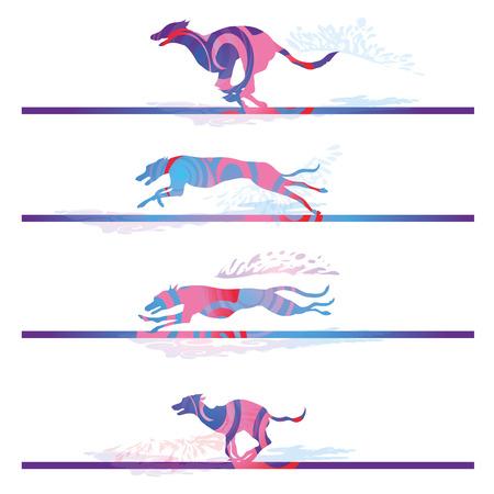 perro corriendo: Racing y ejecutan perros