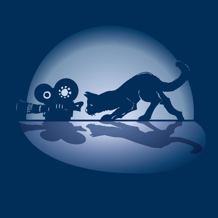 Cat, camera and film Vector