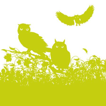 regards: Three Owls