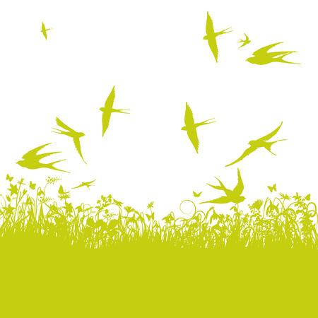 golondrinas: Golondrinas en primavera