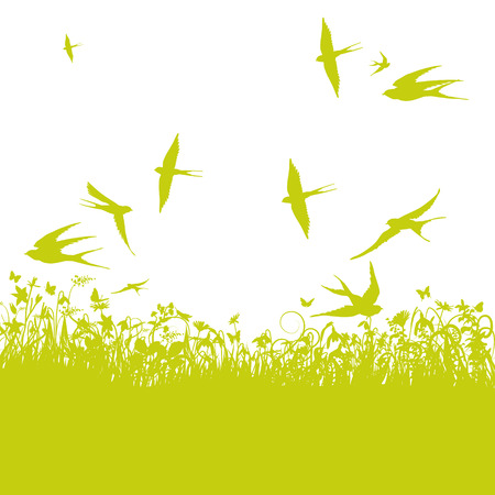 Swallows in the spring Vector