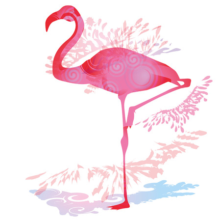 southwest asia: Shadow blob with Flamingo
