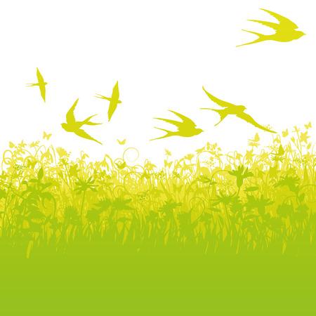 golondrinas: Golondrinas vuelan a baja altura