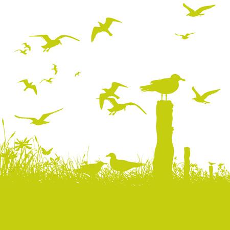 Seagulls at the sea Иллюстрация