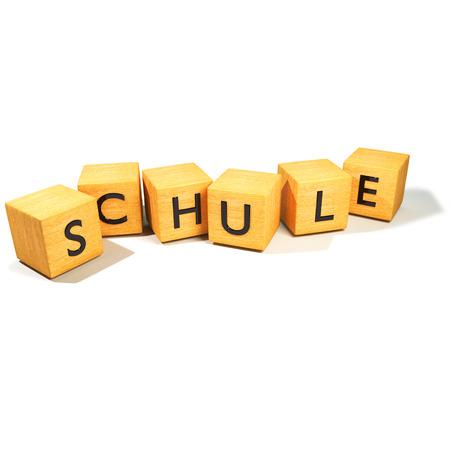 entrants: Dice and school