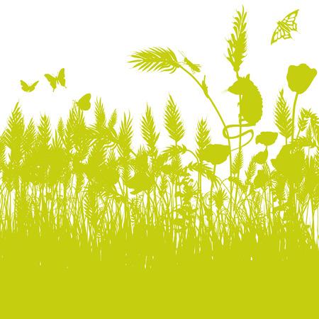 cornfield: Mouse in a cornfield