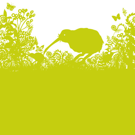 Kiwi in the thicket