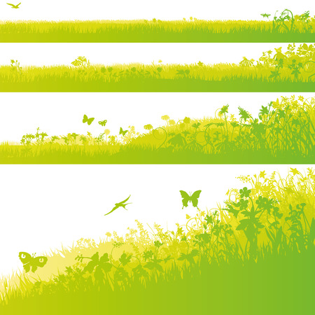 fields  grass: Four grass fields in the garden Illustration