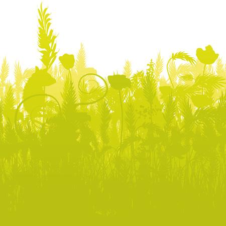 springtime: Mouse in a dense cornfield