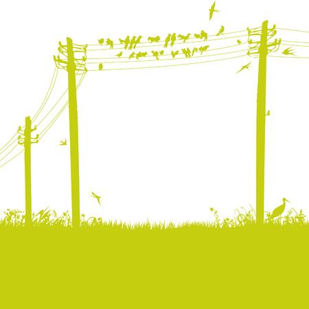 Birds on the telegraph mast Illustration