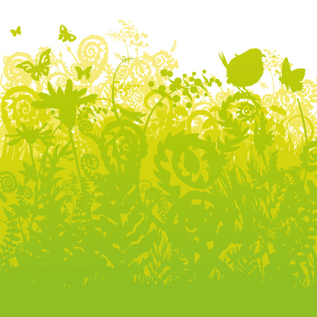 Ferns and birds in the garden vector Illustration