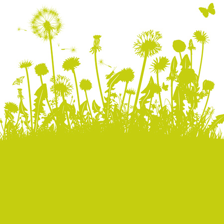 Dandelions in the green meadow  イラスト・ベクター素材