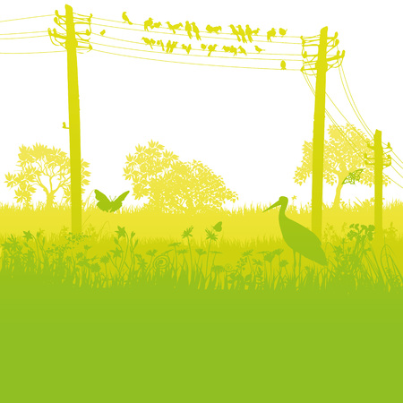 Birds on the telegraph pole in the wild nature Illustration