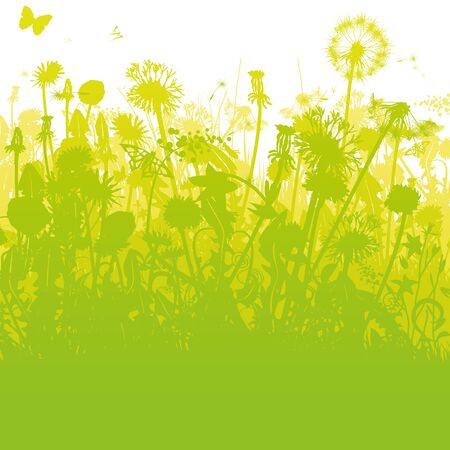 Dandelions in an overgrown, green garden Stock Vector - 131966861
