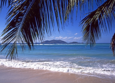 View from Caribbean beach at Cane Garden Bay Tortola in the British Virgin Islands framed by Palm Tree branches in silhouette photo