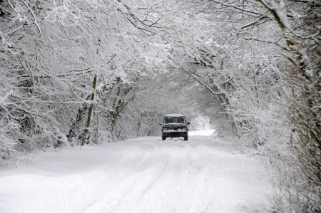 inclement: Car driving on winter snow covered country lane through woodland trees