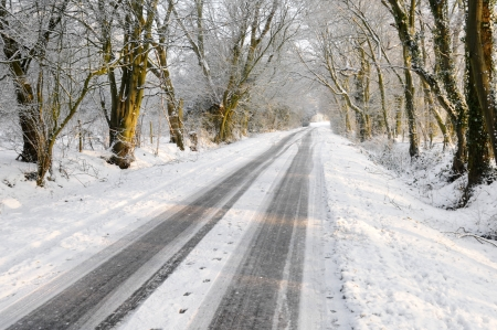 inclement: Winter vehicle tracks on snow covered country lane through woodland trees Stock Photo