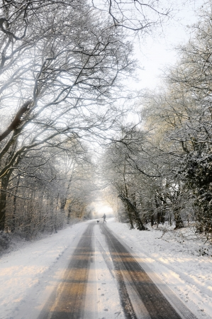 inclement: Distant dog walker crosses snow covered country lane