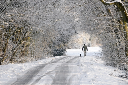 inclement: Dog walker winter walk along snow covered country lane in a winter wonderland